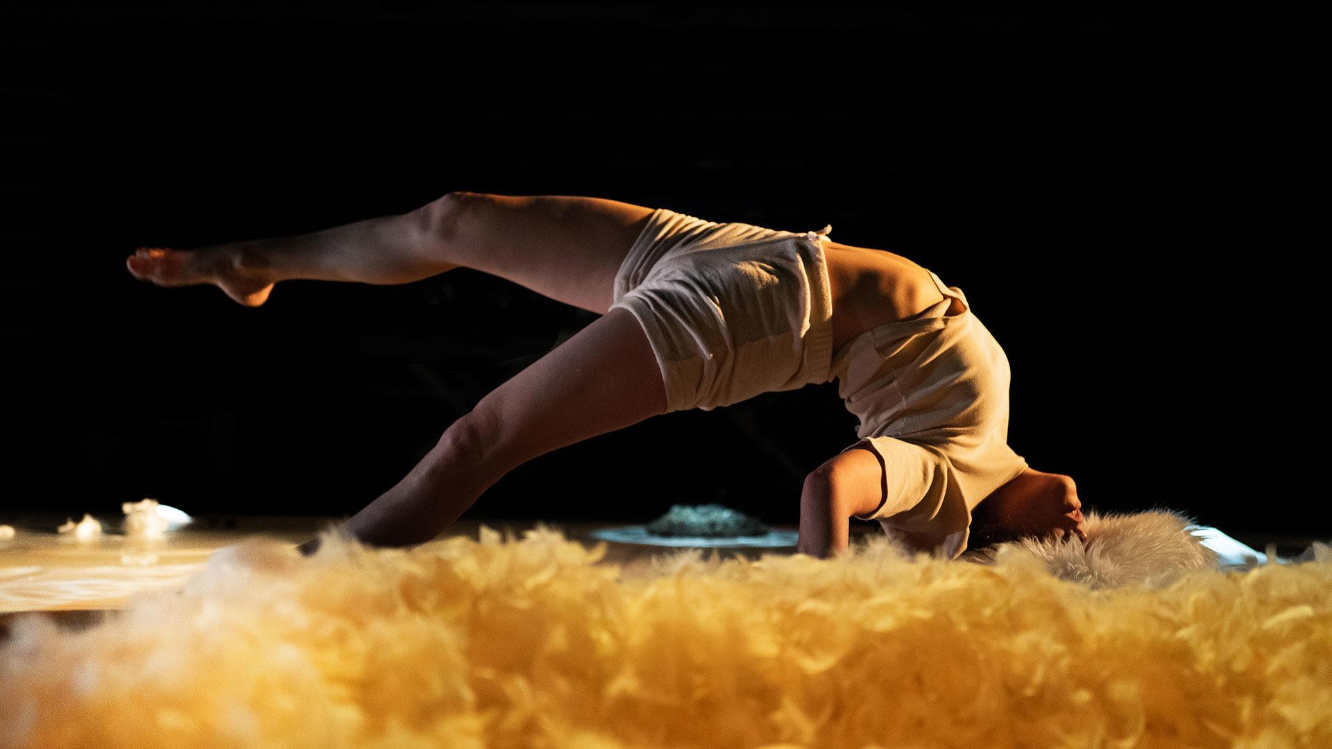 L'écorce-des-rêves---Cie-infime-entaille-©-2020-Fabien--Fons-couleurs